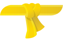 yellow-belt
